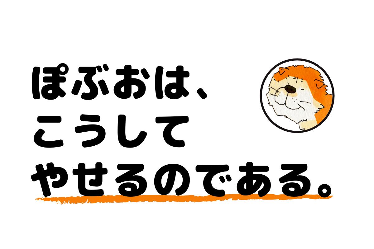 ぽぶおダイエット法